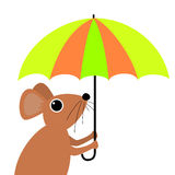 Cute cartoon mouse holding an umbrella Royalty Free Stock Photo