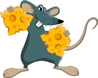 Cute cartoon mouse whit cheese Royalty Free Stock Images