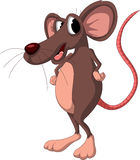 Cute cartoon mouse on white background Stock Images