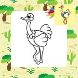 Cute cartoon ostrich. Coloring page Stock Photography