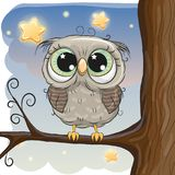 Cute Cartoon Owl on a brunch. Of tree Royalty Free Stock Image