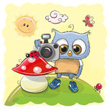 Cute cartoon owl with a camera Royalty Free Stock Images