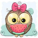 Cute Cartoon Owl girl with watermelon. On a green background royalty free illustration