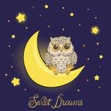 Cute cartoon owl on the moon. Stock Photos