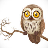 Cute cartoon owl sitting on a branch Royalty Free Stock Photo