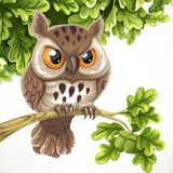 Cute cartoon owl sitting on a oak branch under a crone of leaves Royalty Free Stock Photo
