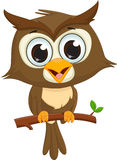 Cute cartoon owl sitting on a tree branch Royalty Free Stock Image