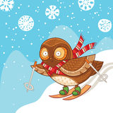 Cute cartoon owl skiing and having fun Stock Images