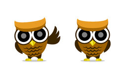 Cute cartoon owl vector character illustration. In cute and innocent design with standard and wave pose Stock Photography