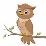 Cute Cartoon Owl. Vector cartoon illustration of an owl perching on a branch Royalty Free Stock Photos