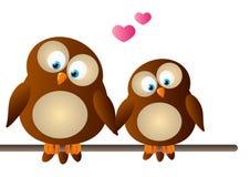 Cute cartoon owls. In love vector illustration