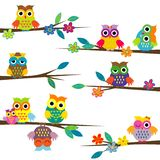 Cute cartoon owls on tree branch. Cute colored cartoon owls on tree branch royalty free illustration