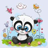 Cute Cartoon Panda with flowers and butterflies. On a meadow royalty free illustration