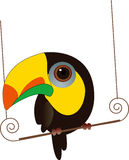 Cute Cartoon Parrot Royalty Free Stock Images