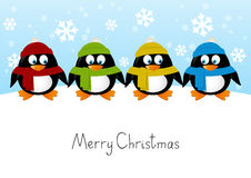 Cute cartoon penguins Stock Photo