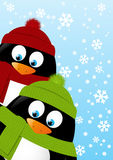 Cute cartoon penguins on winter background Royalty Free Stock Photos