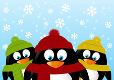 Cute cartoon penguins on winter background Royalty Free Stock Images