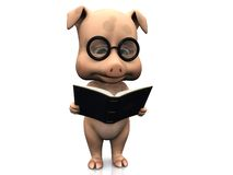 Cute cartoon pig holding a book. Stock Images