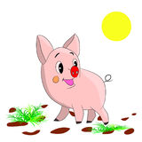 Cute cartoon pig on a white background. Royalty Free Stock Photos