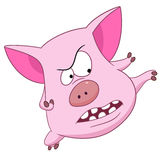 Cute cartoon piggy Royalty Free Stock Photos