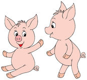 Cute cartoon pigs Stock Images