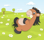 Cute cartoon pony on the blooming meadow. Holding daisy Royalty Free Stock Image