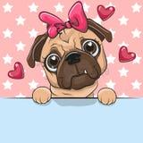 Cute Cartoon Pug Dog Girl is holding a placard on a stars background. Greeting card cute Cartoon Pug Dog Girl is holding a placard on a stars background vector illustration