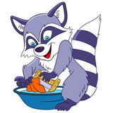 Cute cartoon raccoon Royalty Free Stock Photos