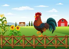 Cute cartoon rooster standing in the farm fence. Illustration of Cute cartoon rooster standing in the farm fence Royalty Free Stock Photography