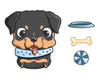 Cute cartoon rottweiler puppy. Vector illustration  on white Royalty Free Stock Image