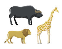 Cute cartoon safari animals vector illustration. Stock Photo