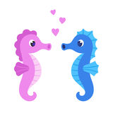 Cute cartoon seahorse couple Stock Image