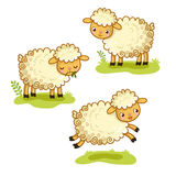 Cute cartoon sheep set. Character Design. A collection of  illustration with sheep is standing, chewing, jumping. Cute animal in the cartoon style Stock Photo