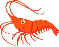 Cute cartoon shrimp Royalty Free Stock Images