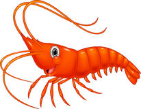 Cute cartoon shrimp Royalty Free Stock Photography