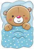 Cute Cartoon Sleeping Teddy Bear Royalty Free Stock Photo