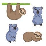 Cute cartoon sloth and quokka animal set Stock Photos