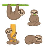 Cute cartoon sloth set Stock Photos