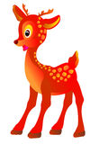 Cute cartoon small deer. Vector illustration  Royalty Free Stock Images