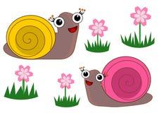 Cute cartoon snail isolated illustrations. Artwork concept stock illustration