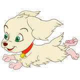 Cute cartoon spaniel. Cute and happy cartoon girlish spaniel dog is quickly and lively running, isolated on a white background Royalty Free Stock Image