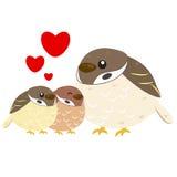 Cute sparrow family. Cute cartoon sparrow family,vector Stock Image