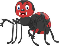 Cute Cartoon spider. Illustration of cute Cartoon spider Royalty Free Stock Photography