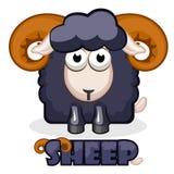 Cute cartoon square black Sheep Royalty Free Stock Photos