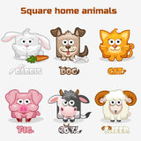 Cute cartoon square Home animals Stock Photography