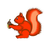 Cute cartoon squirrel on a white background Royalty Free Stock Images