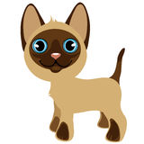 Cute cartoon standing kitten with blue eyes Stock Images