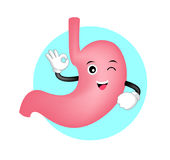 Cute cartoon stomach showing OK hand sign. Royalty Free Stock Images