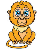 Cute cartoon tamarin monkey Stock Photos