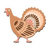 Cute cartoon thanksgiving ornamental turkey, isolated  illustration Stock Photos